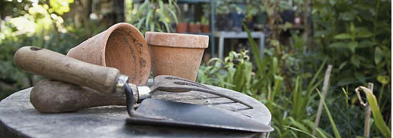 Trädgårdstjänst i Stockholm